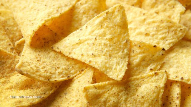 Deception: Xochitl selling conventional 'No GMO' tortilla chips that contain mostly GM corn  Learn more: http://www.naturalnews.com/048190_GMO_tortilla_chips_labeling.html#ixzz3NwfV6HXO