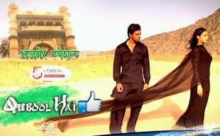 Qubool Hai 20 June 2014 Full Episode By Zee TV.  Qubool Hai is a soap opera on Zee TV produced by 19 Lions Films. The serial focuses on the Muslim community and aims to dispel stereotypes regarding Islam, and has been credited with leading the way for more Muslim oriented programming. Watch and enjoy drama serial Qubool Hai 20 June 2014. Share drama serial Qubool Hai 20 June 2014 with your firends. Also you can download free drama serial Qubool Hai 20 June 2014 from www.dramasvid.com.