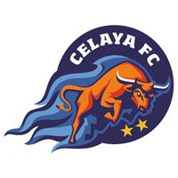 Image result for celaya fc