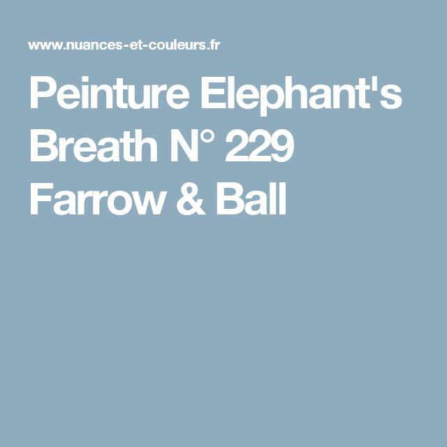 Best 25 Elephants Breath Ideas On Pinterest Elephants