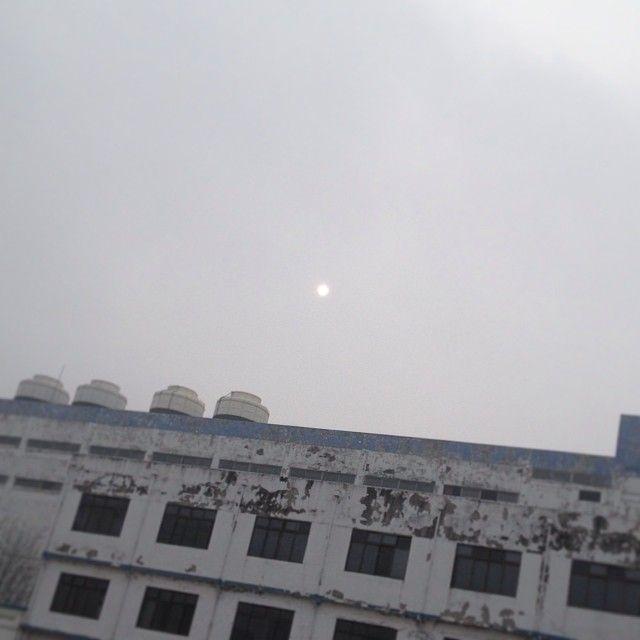 870218 / 안개속의 #sunlight  / 충청북 청주 상당 내덕 / 2014 01 /
