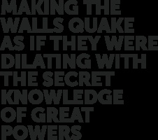 Katarzyna Krakowiak & Michał Libera - Making the walls quake as if they were dilating with the secret knowledge of great powers