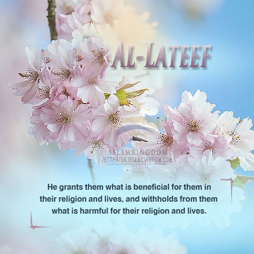 Know Allah through His Names and Attributes https://en.islamkingdom.com/Doctrine-and-Tawhid/Know-Allah-by-knowing-His-Names-and-Attributes