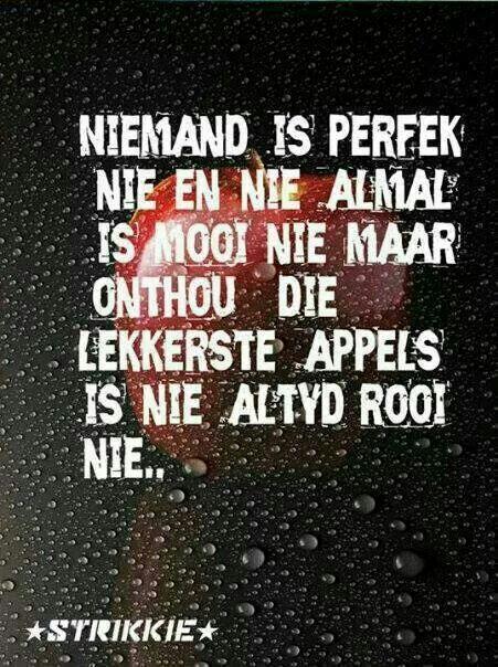 Niemand is perfek nie