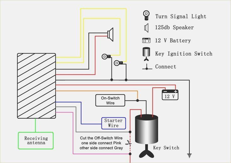 Stunning Pocket Bike Wiring Diagram Ideas Everything You ...