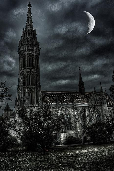The moon has awoken, with the sleep of the sun, the light has been broken, the spell has begun! by ©auntieblues 2004 - 2014