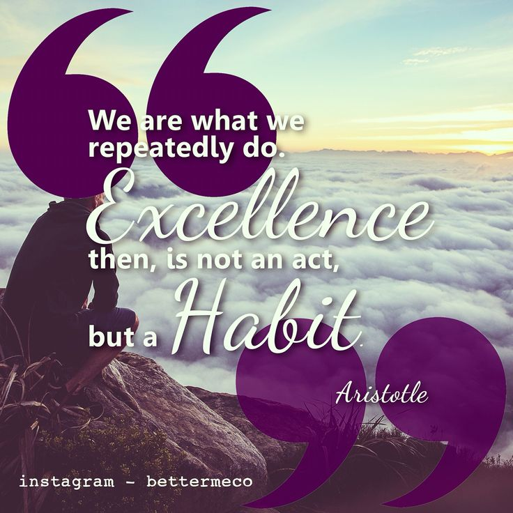 We are what we repeatedly do. Excellence then, is not an act, but a habit. - Aristotle