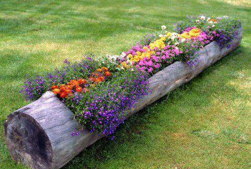 Parterre de fleurs dans un rondin de bois
