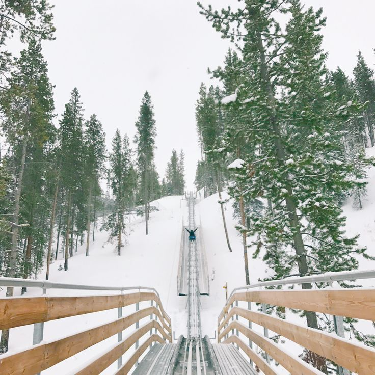 Top 5 winter activities to check out while you're in Vail, Colorado! - Verbal Gold Blog