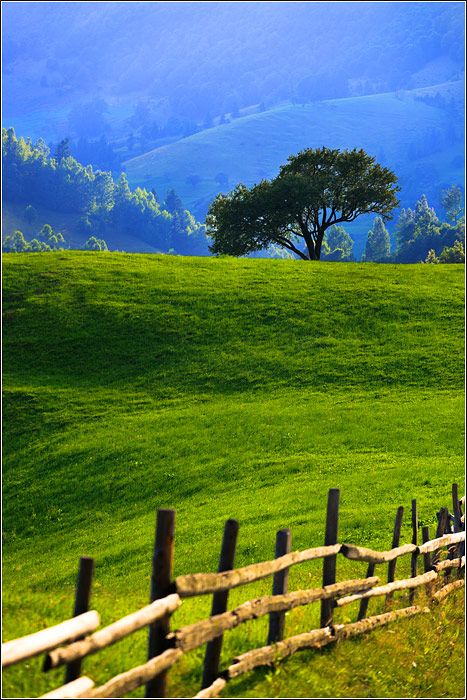 """Green-Grass Covered hills  """"There is a lovely road that runs from Ixopo into the hills. These hills are grass-covered and rolling, and they are lovely beyond any singing of it."""" We picked this picture because it very accurately describes the hills that are talked about on Page 32"""