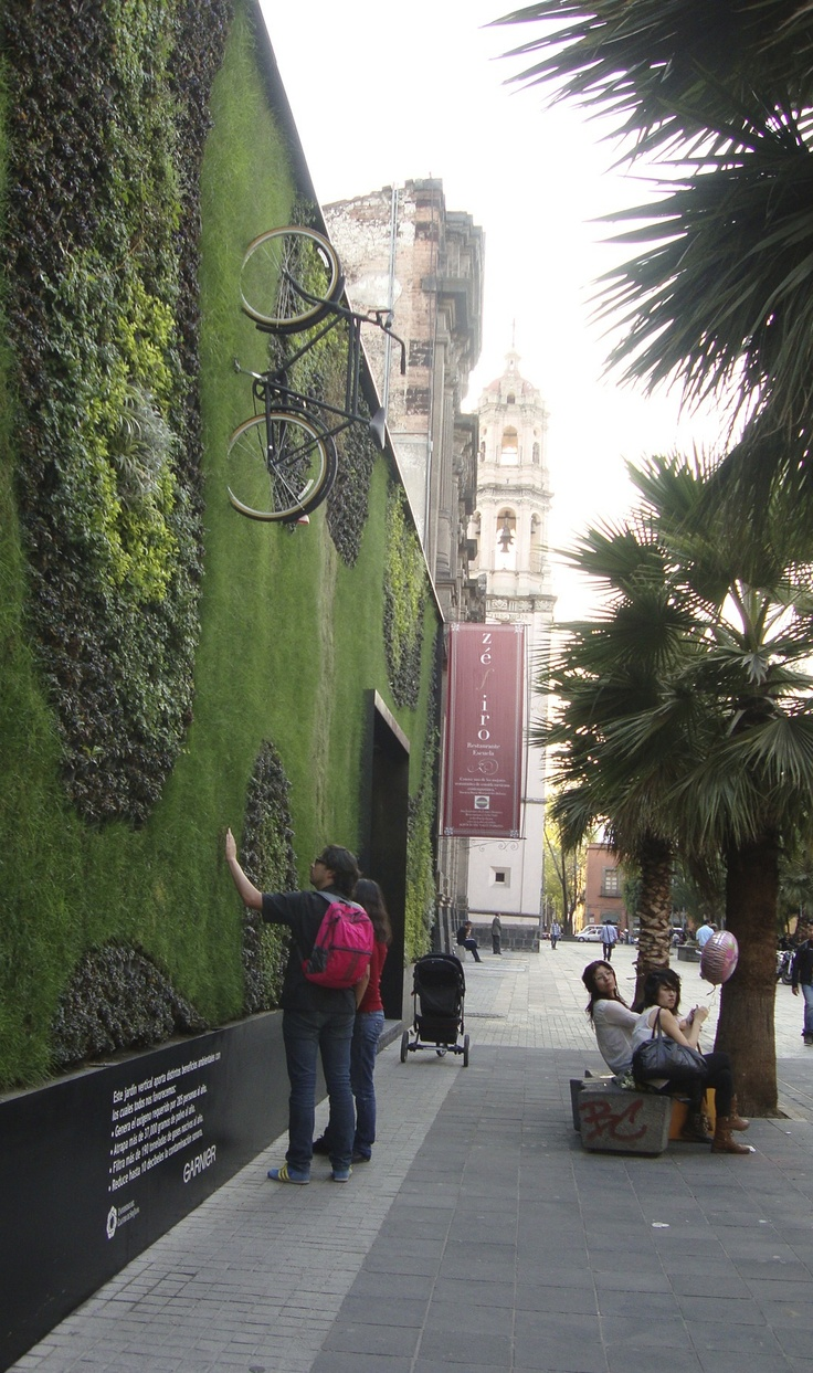 Mexican officials are combating pollution with increased emission control standards and smaller efforts like vertical gardens. This one covers a monastery on Calle Regina in Mexico City's Centro district.