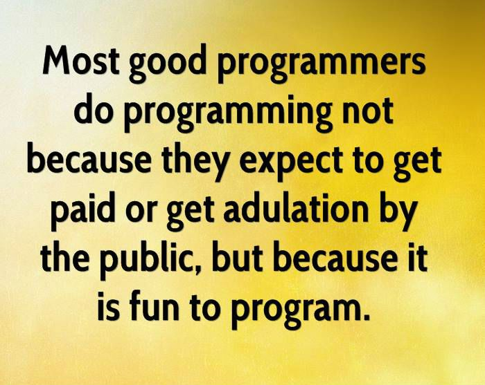 47 best Quotes \ Fun images on Pinterest Computer programming - what do you do for fun