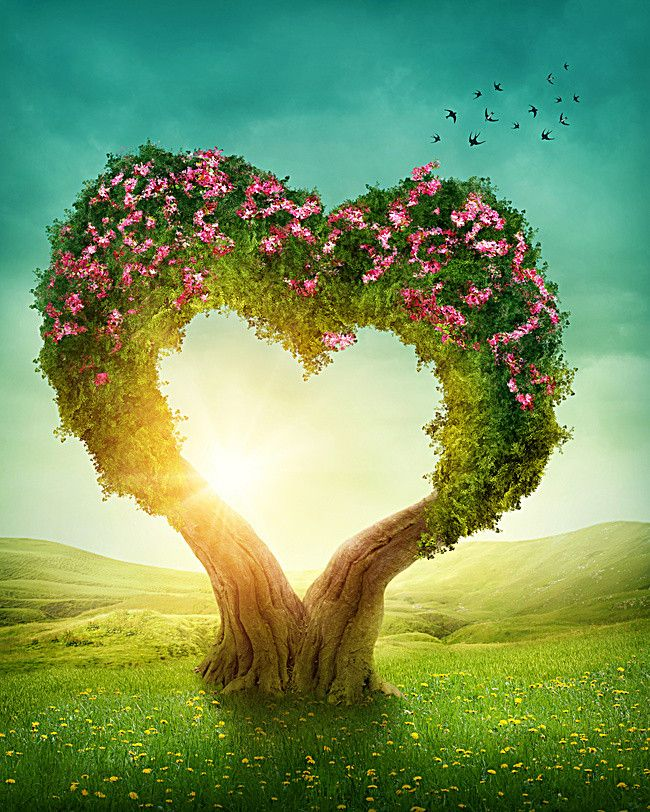 Romantic Fantasy Love Cherry Tree Heart In Nature Proverbs About Love Green Scenery