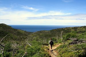 """Top 10 """"Must See"""" Sights & Sounds in Newfoundland, Canada - ehCanadaTravel.com Blog"""