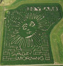 Corn Maze | Bloomsbury Farm