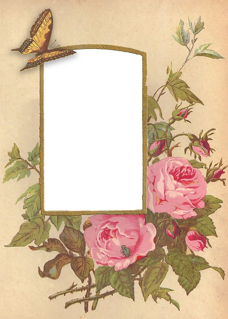 Wings of Whimsy: Rose Album Mat #vintage #ephemera #freebie #printable #valentine: