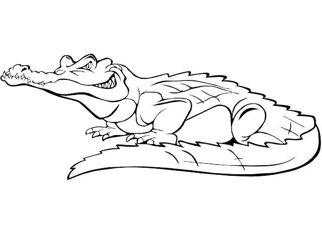 Krokodile Zum Ausmalen Ausmalbilder Krokodile Ausmalbilder