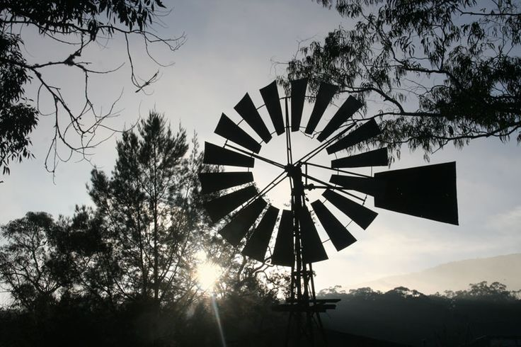 Our windmill provides interesting contrasts early in the morning