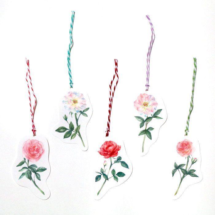 Illustrator Mitsui(@mitsui_chikako)さん | Twitter/ watercolor,rose,flower,illustration,バラ,イラストレーション,水彩