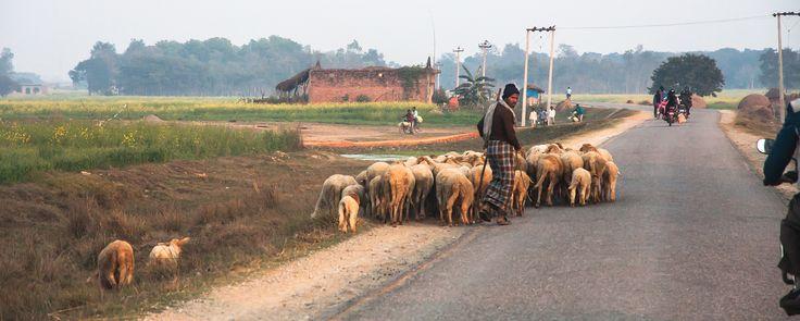Route du sud Népal