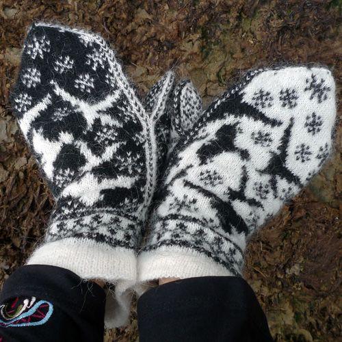 Corbeaux sur neige « Tricoteuse d'Islande