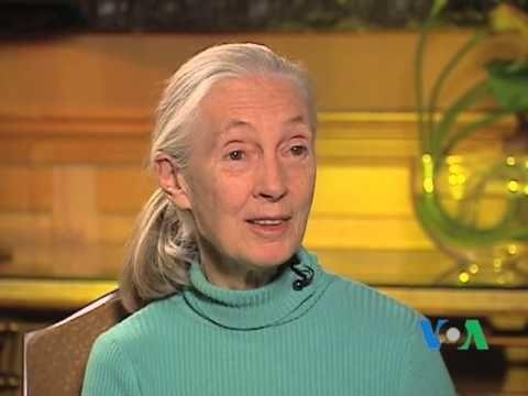 Джейн Гудолл обращается к мировому сообществу