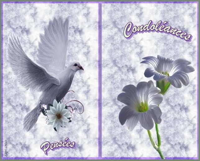 Carte De Condoleances Gratuite A Imprimer Carte Condoleances