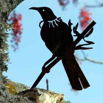 Stunning Tui from our collection of Metal Bird sculptures http://www.newzealandshowcase.com/productdetails.cfm/productid/662