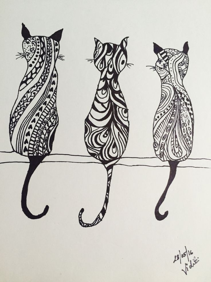Doodle # the cat story#