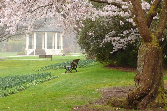 Queens Park Invercargill, NZ.  This is beautiful!