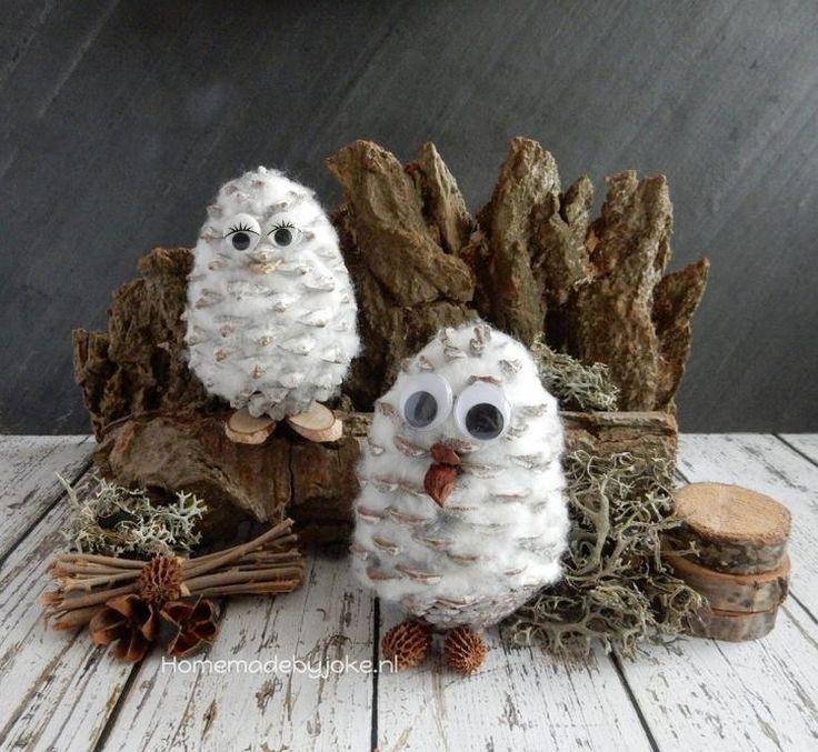 Foto: Om deze uiltjes te maken heb je naast een dennenappel en watten niet veel nodig. Op mijn blog staat een duidelijke how to hoe je deze uiltjes kunt maken.. Geplaatst door Homemade By Joke op Welke.nl