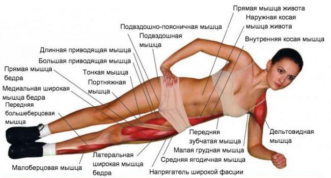Всего одно занятие, которое поднимает тонус всех мышц и избавляет от лишнего веса - фото 3