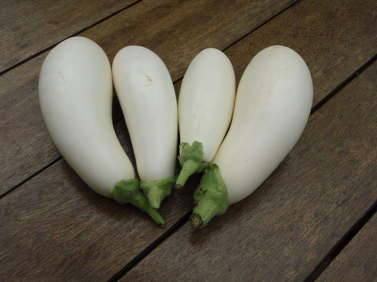White aubergine, #Gastronomy #local #products #Santorini