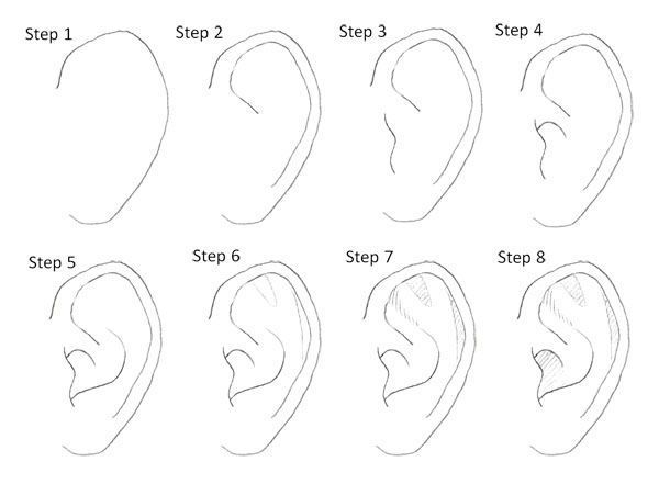 Drawing Manga Ears Step By Step Drawing Ears Manga Step Drawing Tips Drawing Tutorial Drawings