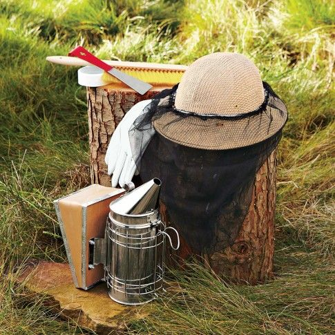 Backyard Beehive Starter Kit - might have to try this!