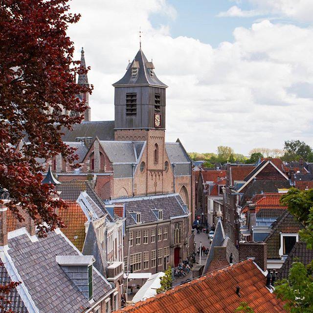 A university city since 1575, #Leiden houses Leiden University, the oldest university of the Netherlands. #Netherlands #travel