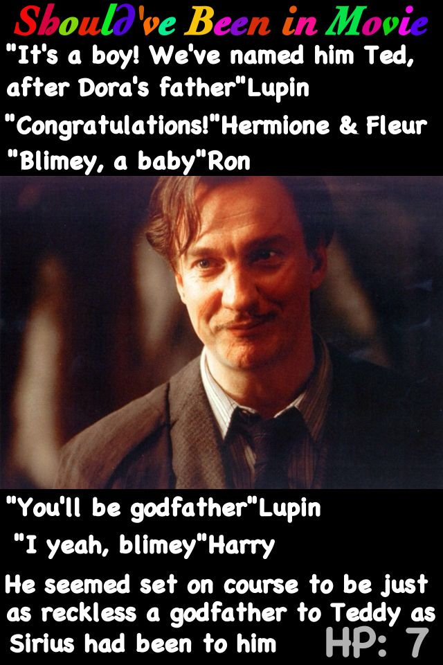 Harry Potter and the Deathly Hallows Should've Been in Movie Lupin Ted Ron Shell Sottage Bill and Fleur Harry Godfather Sirius