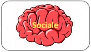 Tekstboks_sociale hjerne