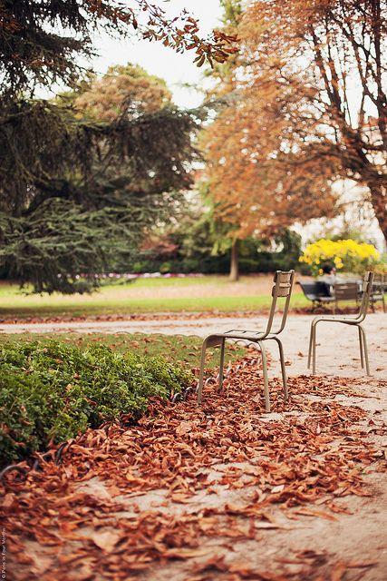 #Autumn in Paris, photo by Carin Olsson #Fall #Paris #France