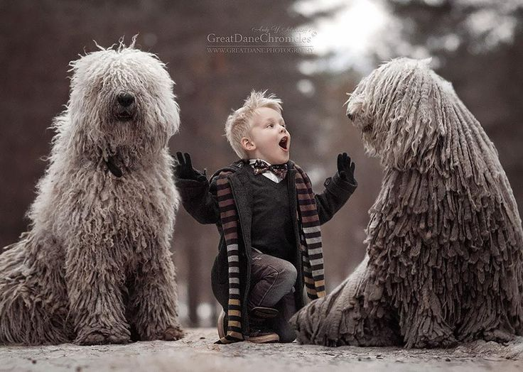 """""""Little Kids and Their Big Dogs"""" is a heartwarming photography project by Andy Seliverstoff that focuses on the unbreakable bond between little children and their supersized dogs."""