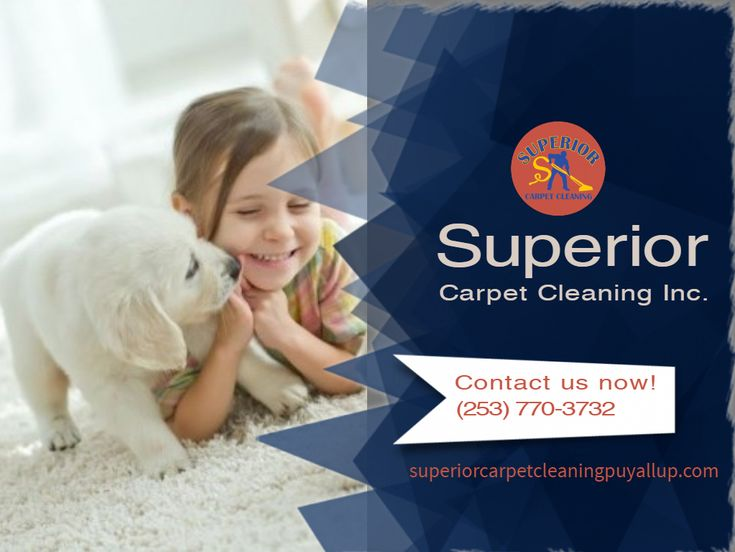 Carpet Steam Cleaning in Puyallup, WA Upholstery Cleaning in Puyallup, WA Air Duct Cleaning in Puyallup, WA Tile and Grout Cleaning in Puyallup, WA Pet Stain and Odor Removal in Puyallup, WA Carpet Stretching and Repair in Puyallup, WA House Cleaning Move in/out in Puyallup, WA Roof and Gutter Cleaning in Puyallup, WA Pressure Washing in Puyallup, WA Free Estimate Cleaning in Puyallup, WA