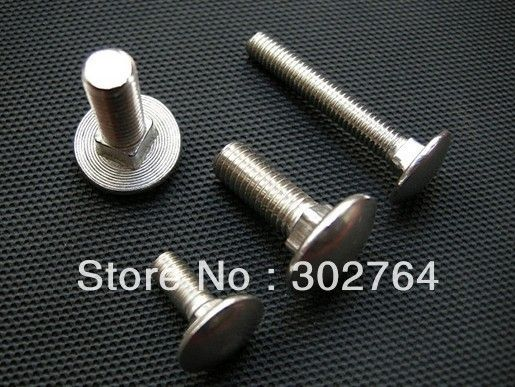 M6*25mm X 50PCSstainless steel carriage bolt din 603,fastener bolt