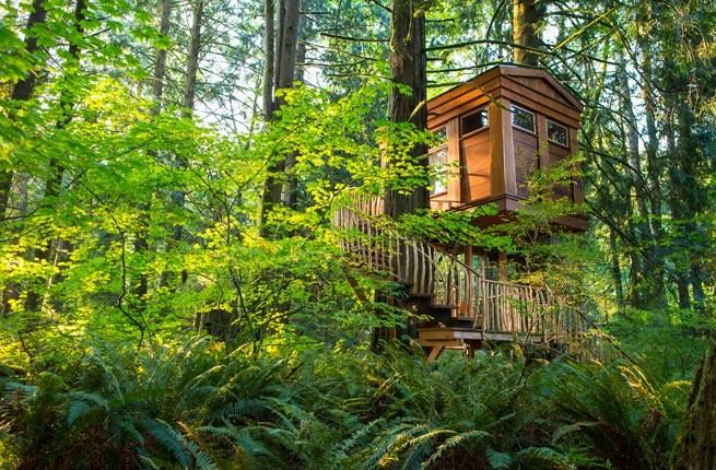 Take your love of the great outdoors to new heights by staying in one of these amazing treetop hotels.