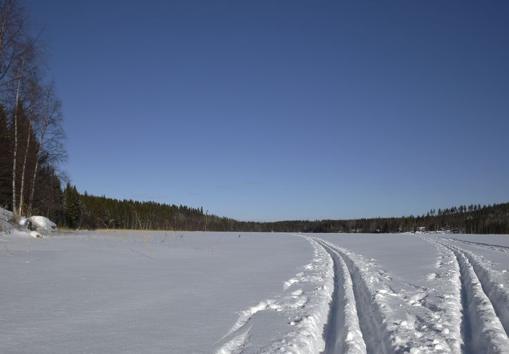 Ski trails on a lake, picture from the Northern Sweden.