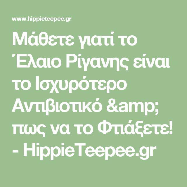 Μάθετε γιατί το Έλαιο Ρίγανης είναι το Ισχυρότερο Αντιβιοτικό & πως να το Φτιάξετε! - HippieTeepee.gr