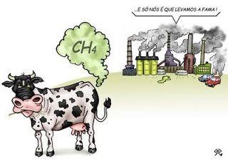 Efeito estufa? Culpa das vacas que não respeitam o...