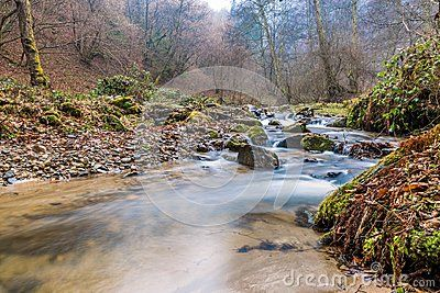Autumn Smoky Mountain stream long exposure silky water