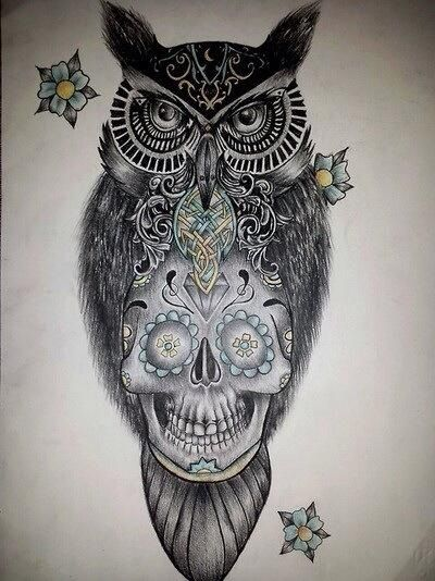 17 best images about sugar skull owls on pinterest for Owl with sugar skull tattoo