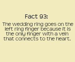 LOVEIdeas, Quotes, Rings Fingers, Random, True, Fun Facts, Interesting, Things, Wedding Rings