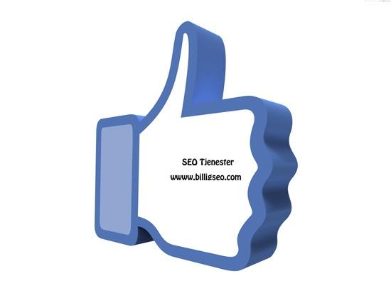 SEO Tjenester  SEO Linkbygging,Facebook og administrering av din PPC kampanje